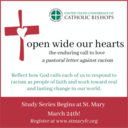 Open Wide our Hearts - a pastoral letter against racism - ZOOM