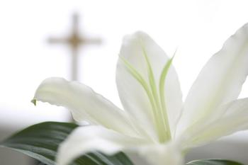 Transfiguration Parish (Wauconda): EASTER MASSES: ENGLISH