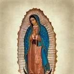Plenary Indulgence offered for Our Lady of Guadalupe
