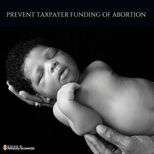"""Tell Congress: """"Human Infrastructure"""" MUST NOT fund abortion!"""