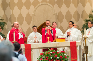 Ordination Photos Available