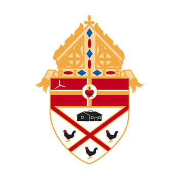 Reflections from Bishop Wack on the 2018 USCCB Meetings in Baltimore