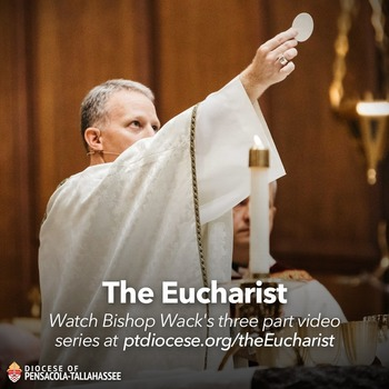 """The Eucharist,"" Bishop Wack's Video Series"