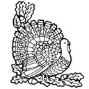St. Catharine Annual Turkey Drive