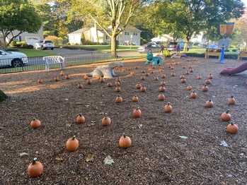 Pumpkin Patch for Students