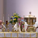 At Easter Vigil, Bishop preaches on the hope the newly risen Jesus brings to all