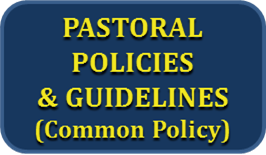 This is the common policy approved by the bishops of New Jersey for marriage preparation in the Diocese of Trenton.