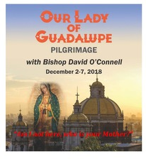 Pilgrimage to the Basilica of Our Lady of Guadalupe, Mexico City…with Our Bishop