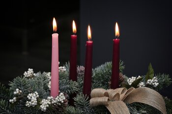 Bishop's Reflections for Advent: A time to encounter