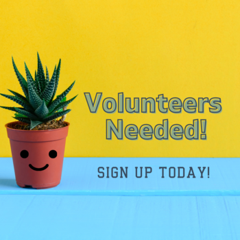 Are you Interested in Getting More Involved?