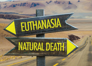 Euthanasia/Assisted Suicide