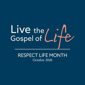 Respect Life - Catholics in Political Life