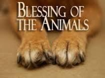 Blessing of Animals Cancelled at Sacred Heart St. Catherine of Sweden