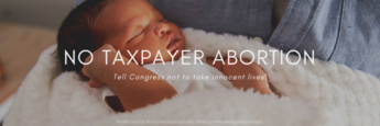 Webinar: Stop Taxpayer-Funded Abortion Weds., May 12 at 2pm