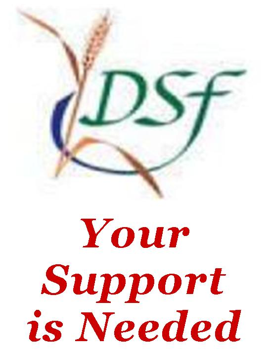 Special Collection to Support the Diocesan Services Fund (DSF)