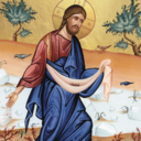 15th Sunday of the Ordinary Time