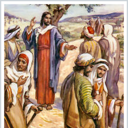 Fifteenth Sunday In Ordinary Time