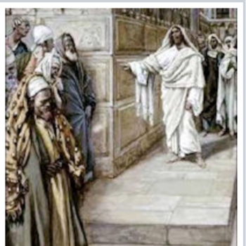 27th Sunday of the Ordinary Time