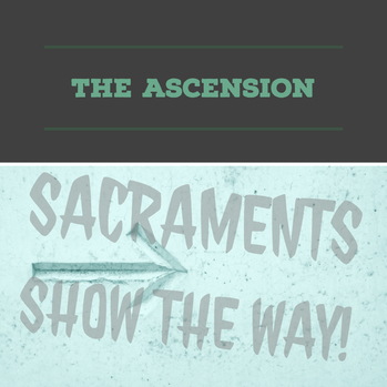 The Ascension: Sacraments show the way