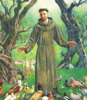 Bible Study: Catholicism: St. Francis of Assisi