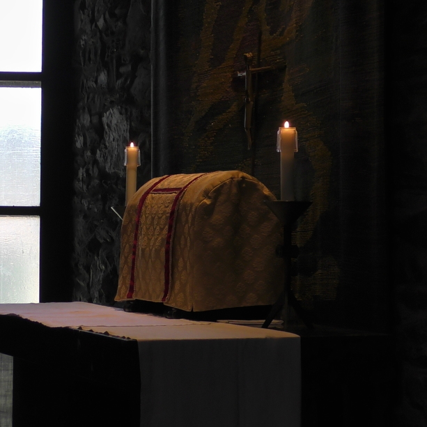 DAILY HOMILIES & <br /> REFLECTIONS