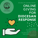 Give to the Diocesan Response Effort