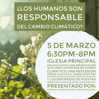 A Reflection on Laudato SI--Spanish