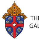 Statement from Archdiocese of Galveston-Houston