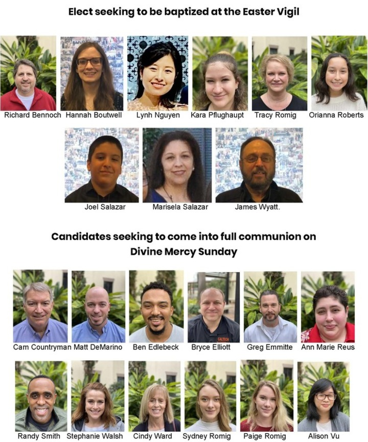 Spring 2021 Elect and Candidates