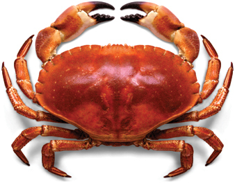 Parish Crab Feed
