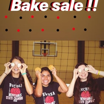 BVCHEA Volleyball Fundraiser