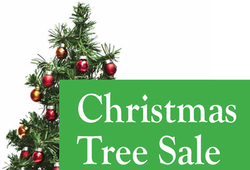 St. Jude Christmas Tree and Wreath Sale - Shrine of