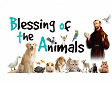 Blessing of Pets 2019 - Photo Album