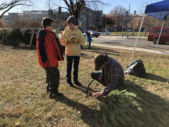 Boy Scout Troop 100 Christmas Tree Sale a Success
