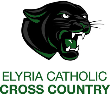 All County Cross Country Teams Annouced - Matt Krese Qualifies for State