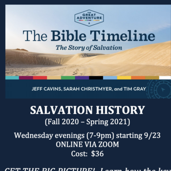The Bible Timeline Great Adventure Bible Study