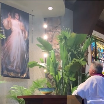 VIDEO - The Divine Mercy Novena Day 7