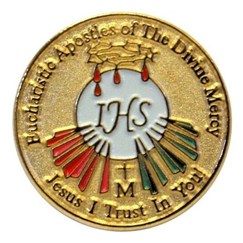 Eucharistic Apostles of the Divine Mercy Interest Meeting