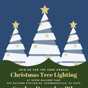 Saint Mary Catholic School Choir to Sing at Upper Salford Park Christmas Tree Lighting, December 8