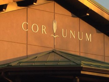 Cor Unum Seeking Volunteers