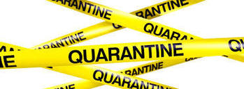 "Do you know what ""Quarantine"" means?"
