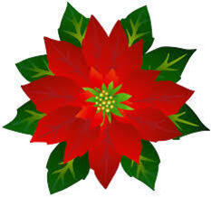 HSA Poinsettia Sale Order Pickup