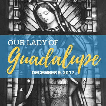 Diocesan Celebration in Honor of  <br />Our Lady of Guadalupe