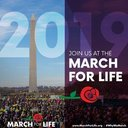 Registration for the National March for Life Bus Trip