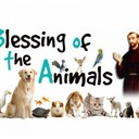 Blessing of The Animals - School