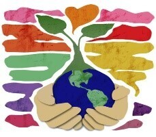 Small Steps to Care for Creation