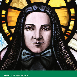Feast of St. Frances Xavier Cabrini