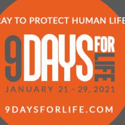 The Complete 9 Days for Life Novena