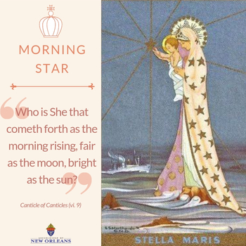Mary, Morning Star