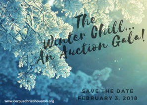 The Winter Chill...An Auction Gala! 02.03.2018